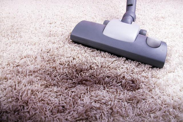 Clean and Maintain The Carpet